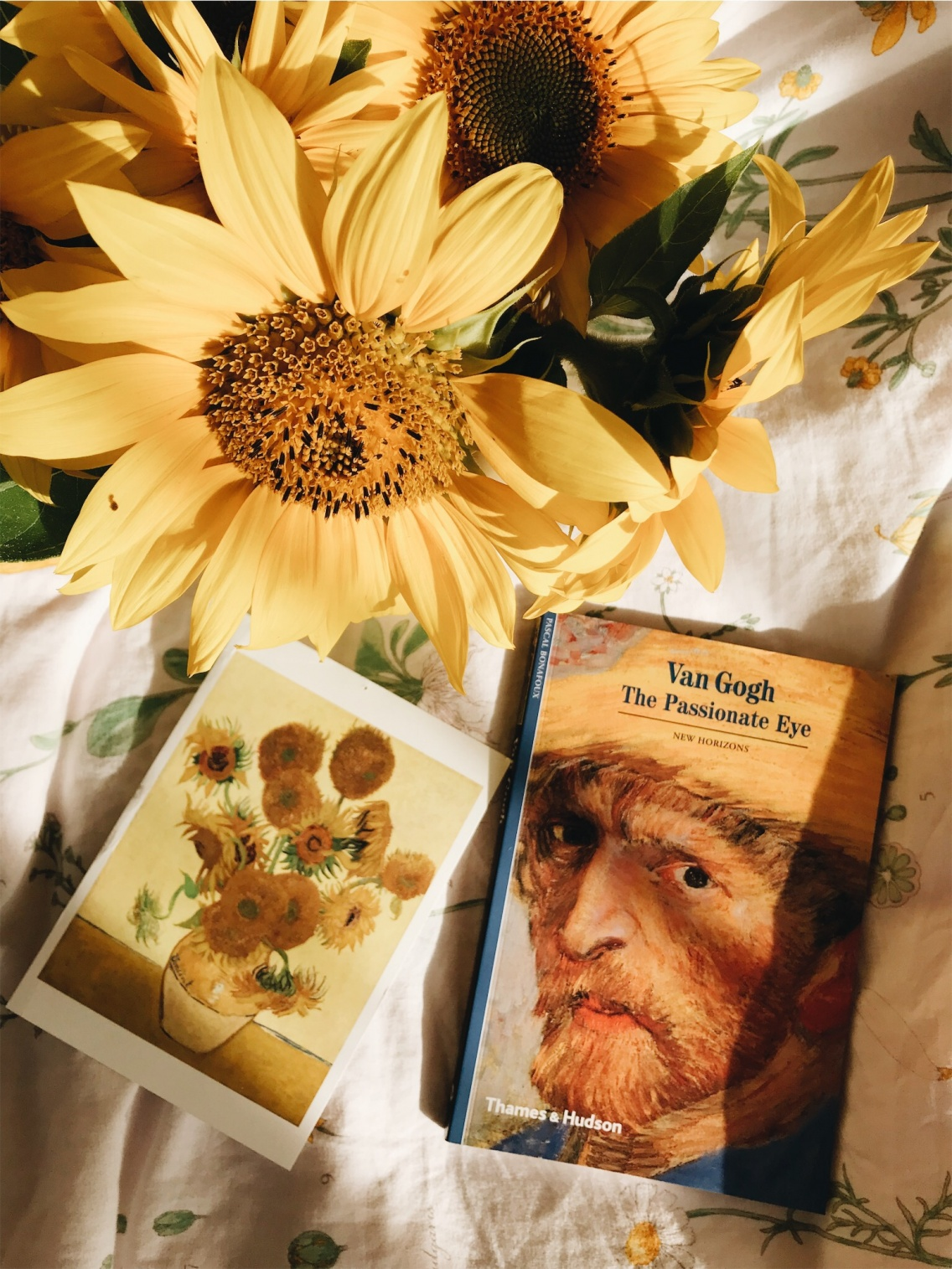 Yellow Aesthetic Sunflower