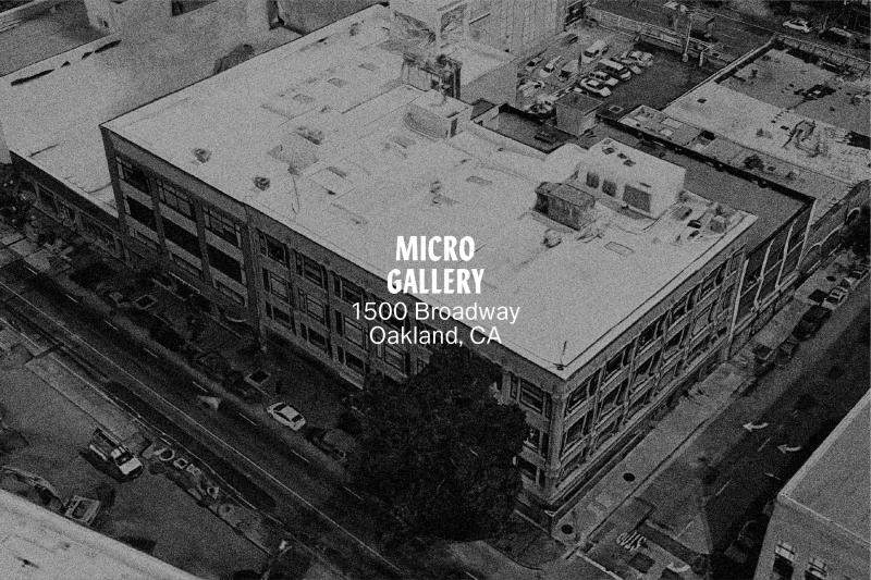 Introducing Micro Gallery
