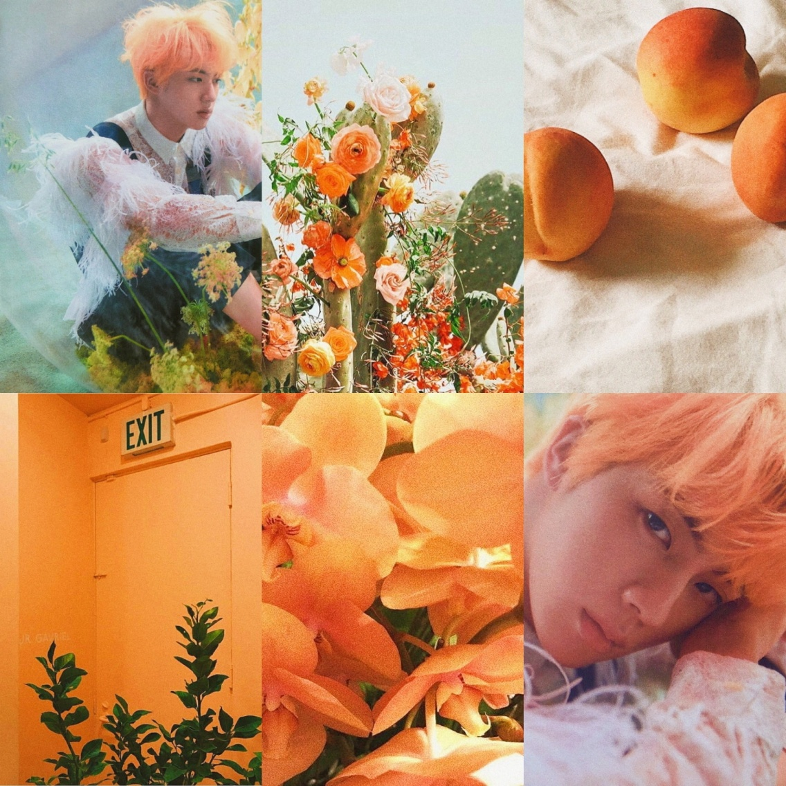Kim Seokjin Orange Aesthetic Edit By Me Bts Jin Seokjin Aesthetic Collage Edit Orange Model Photography Peach Plants Yoonji Collages Vsco