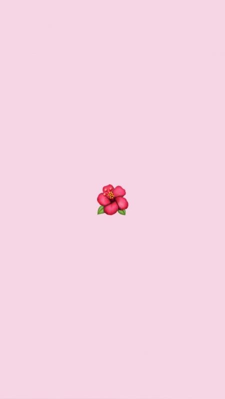 Vsco Cute Wallpapers Lockscreens Images