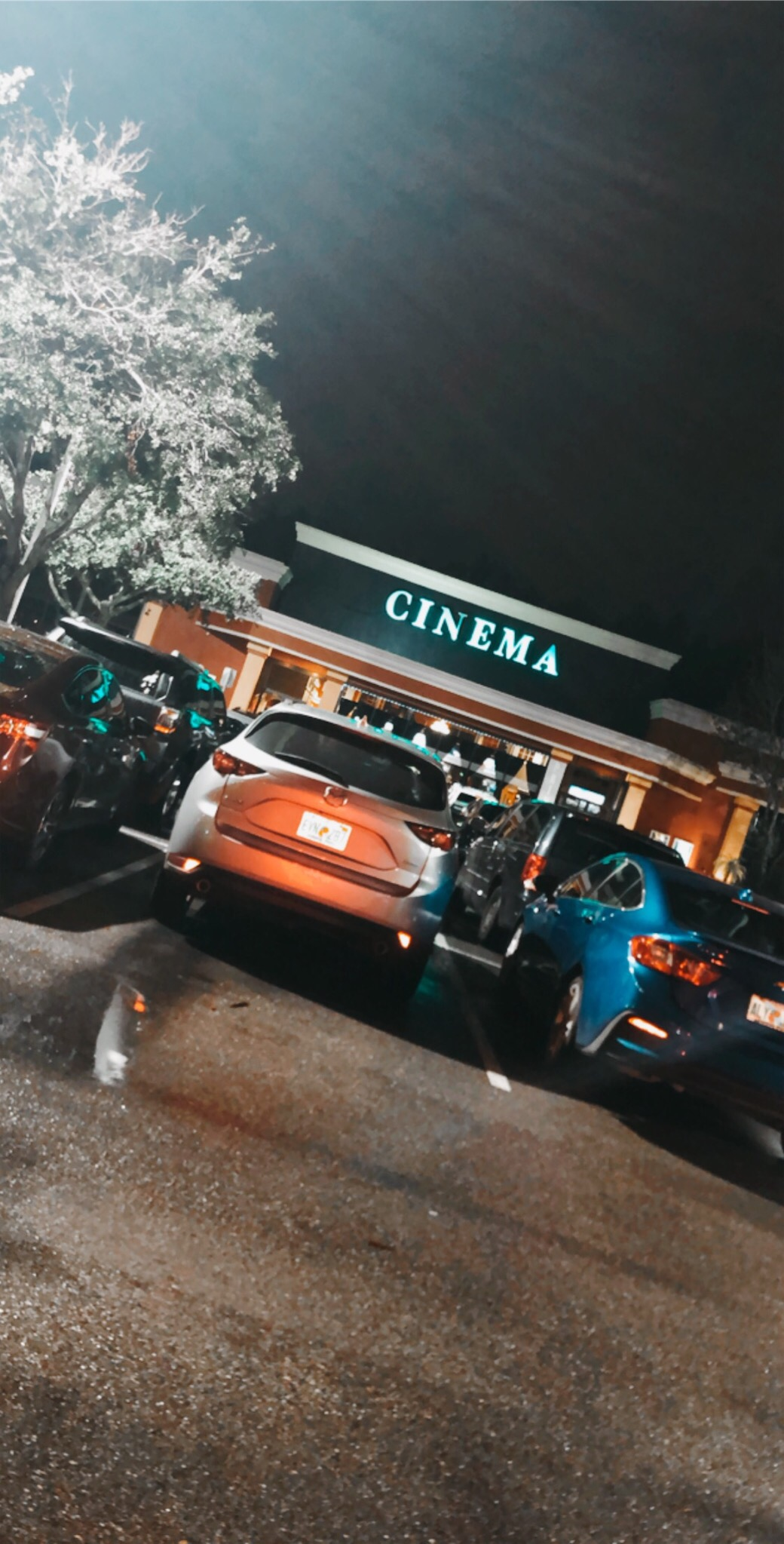 Night Out In The Town Movies Aesthetic Nighttime Nature Muggy Lights Cars Graciemaek Vsco