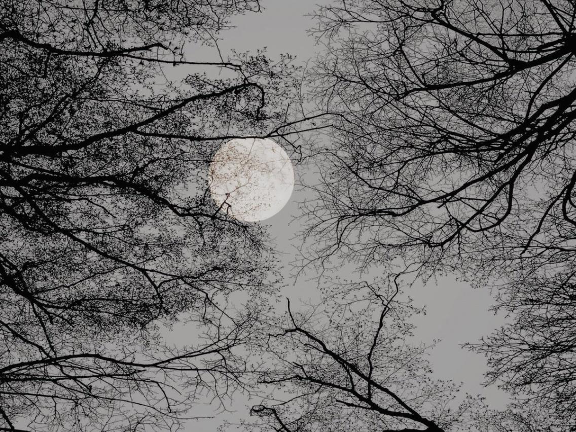 aesthetic moon   ceiax   VSCO